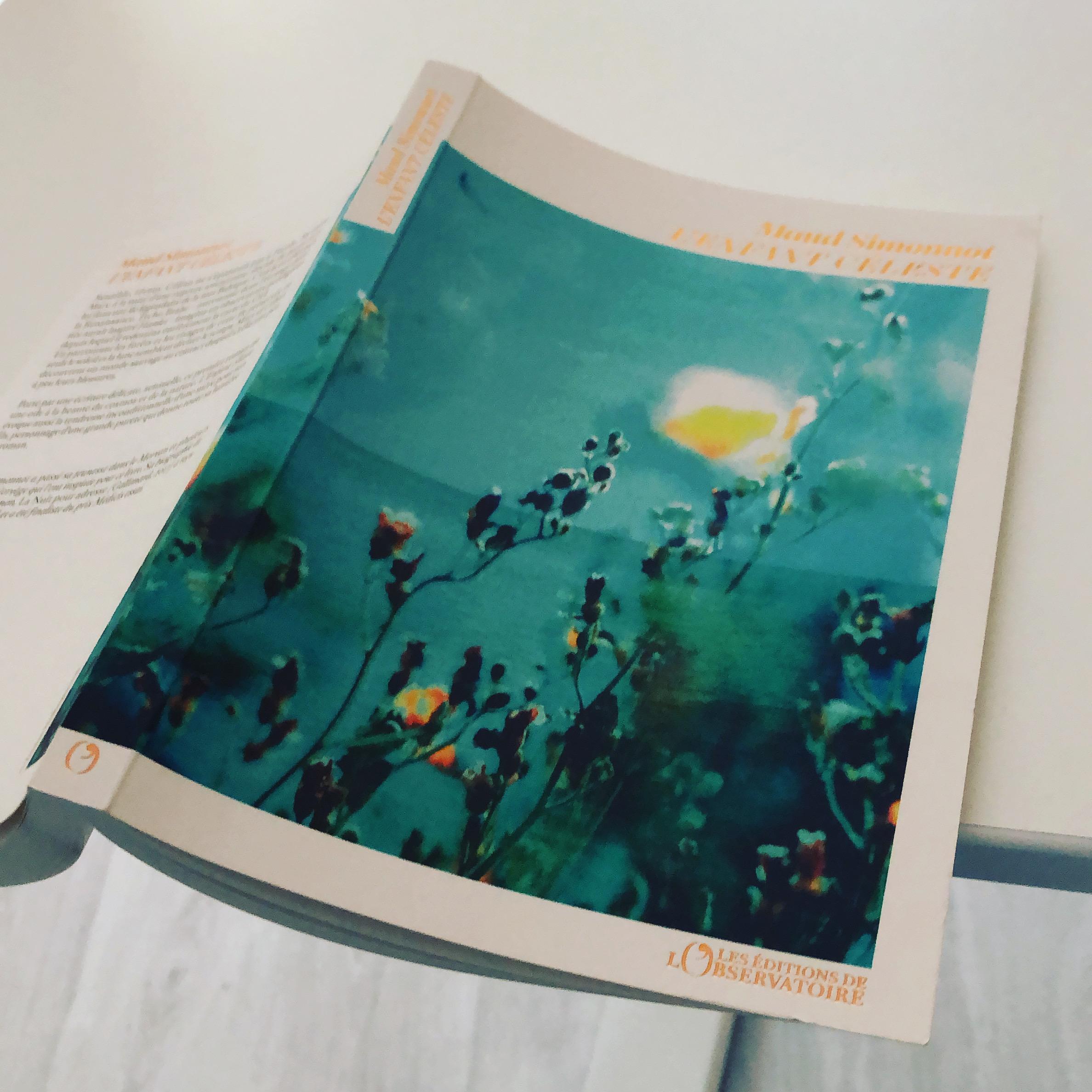 L'enfant Céleste RETOUR A L'ESSENTIEL Maud Simonnot Les Editions de l'Observatoire